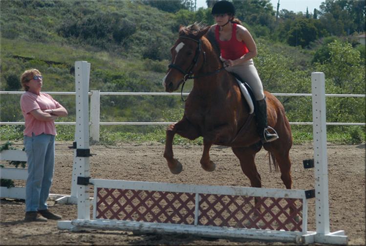 Comment devenir moniteur d'activites equestres