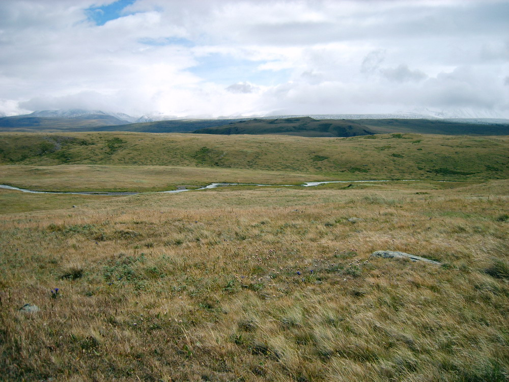 http://upload.wikimedia.org/wikipedia/commons/f/f1/Ukok_Plateau.jpg