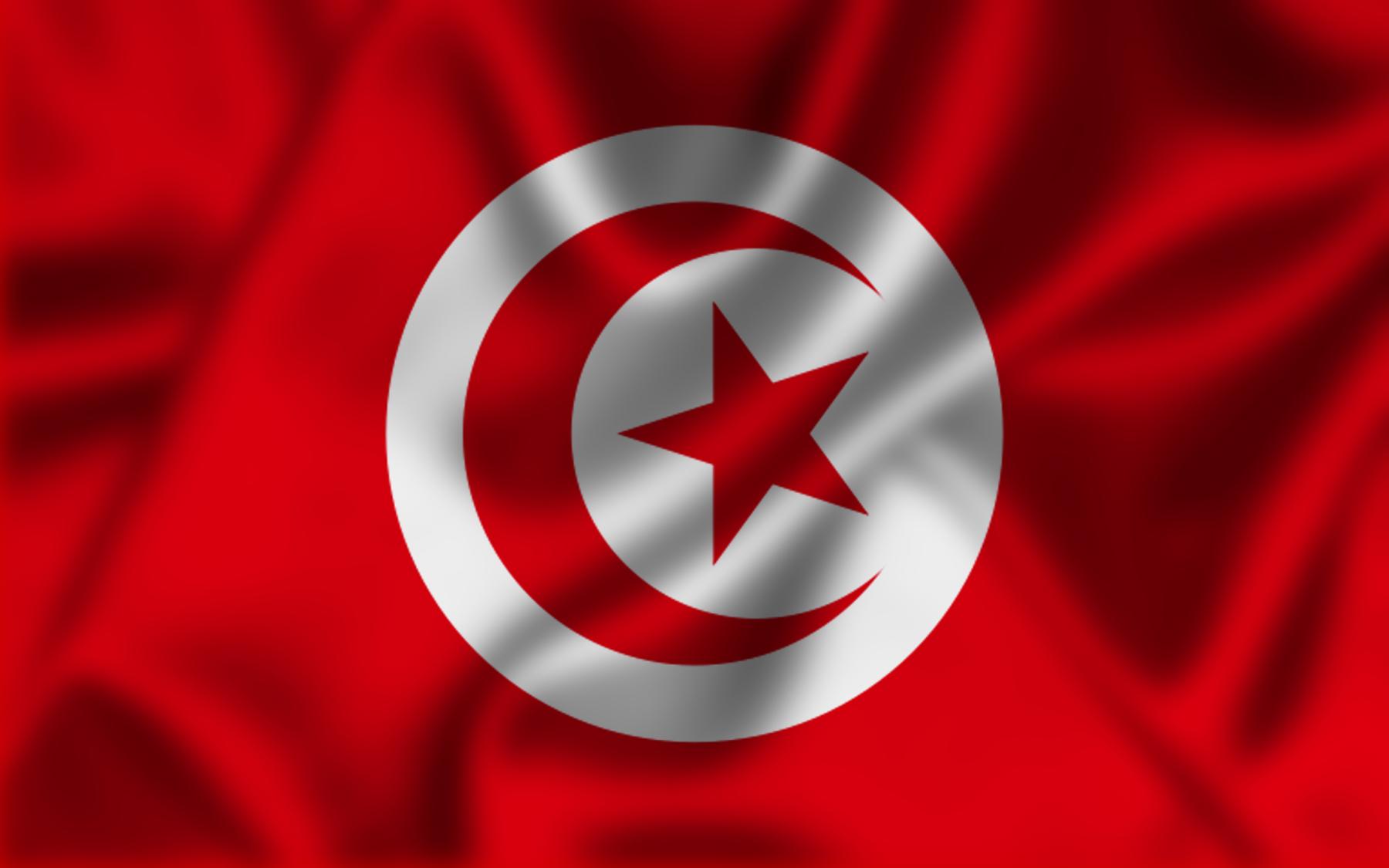 File:علم تونس، غير رسمي.jpg
