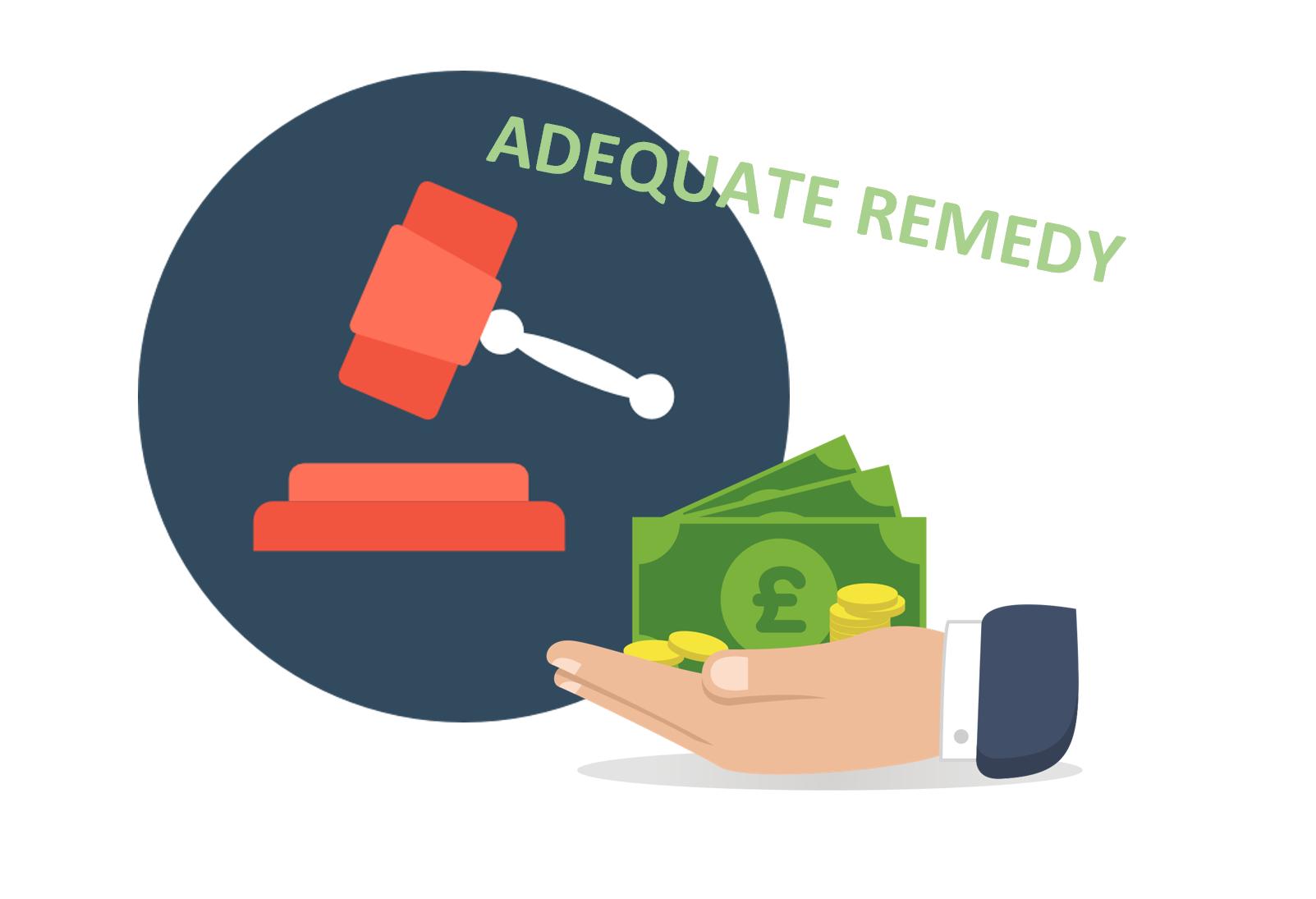 Adequate Remedy Wikipedia