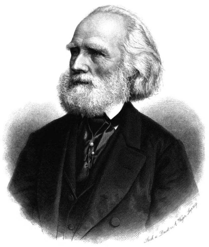 Alexander braun wikipedia for Alexander heinrich