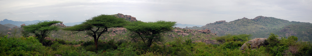 Balamathi Hills Panoramic View.jpg