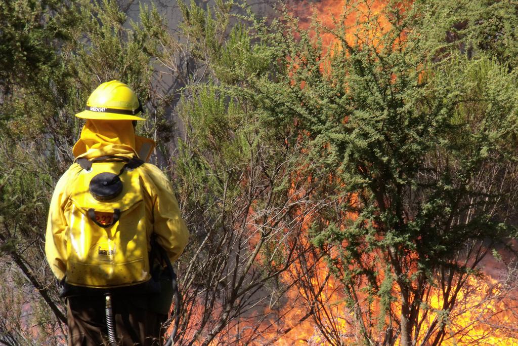 Brigada de incêndio – Wikipédia, a enciclopédia livre