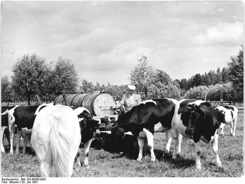 barockuhren vor 1945