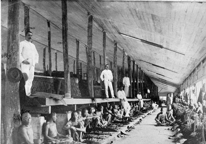 File:COLLECTIE TROPENMUSEUM Koelies sorteren tabaksbladeren in de fermenteerschuur van de tabaksonderneming Bandara Klippa van de Deli Maatschappij Oost-Sumatra. TMnr 60001693.jpg