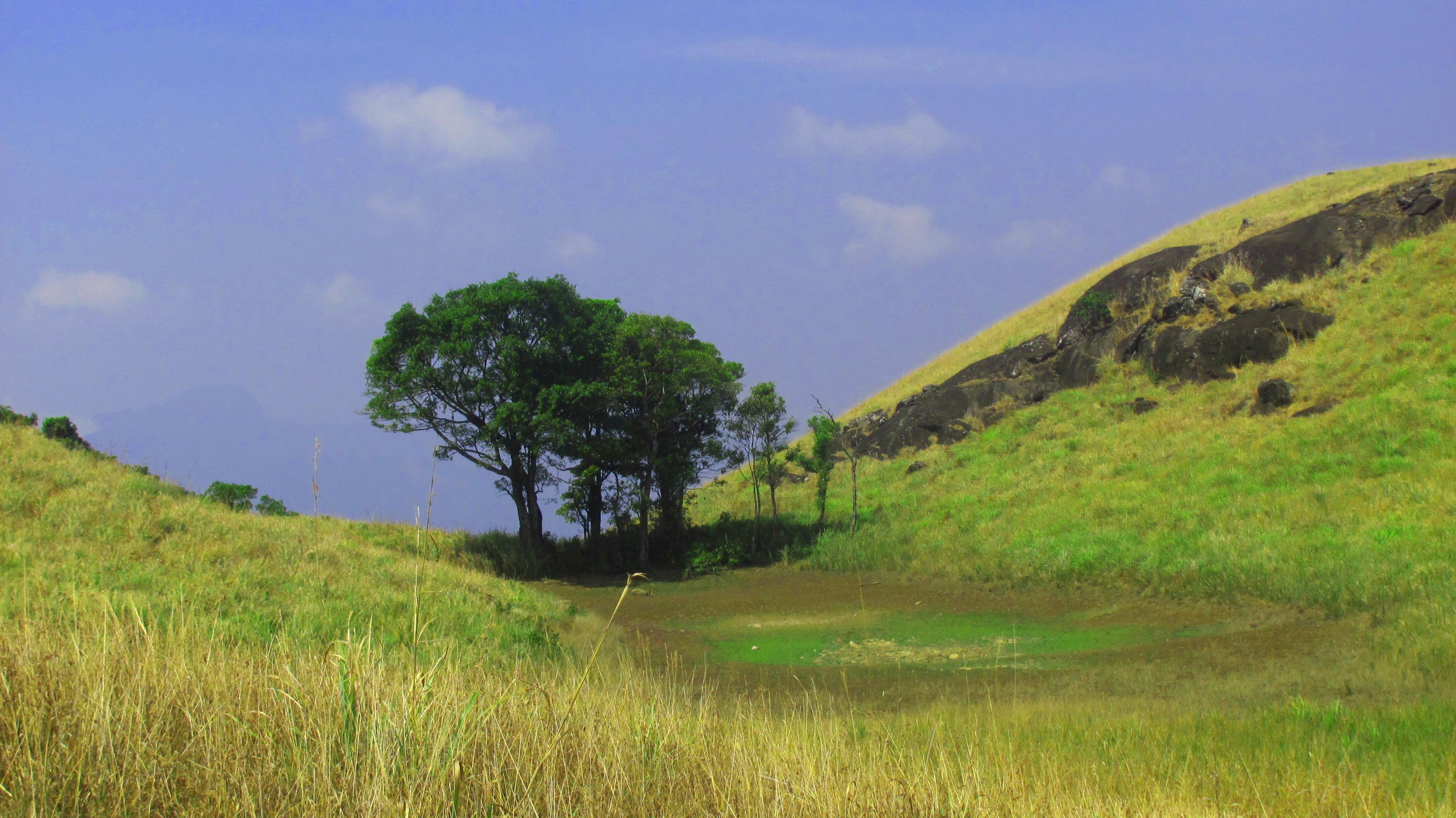 Chembra Peak Trek, Chembra Peak Trekking, Nilgiri Hills Trekking