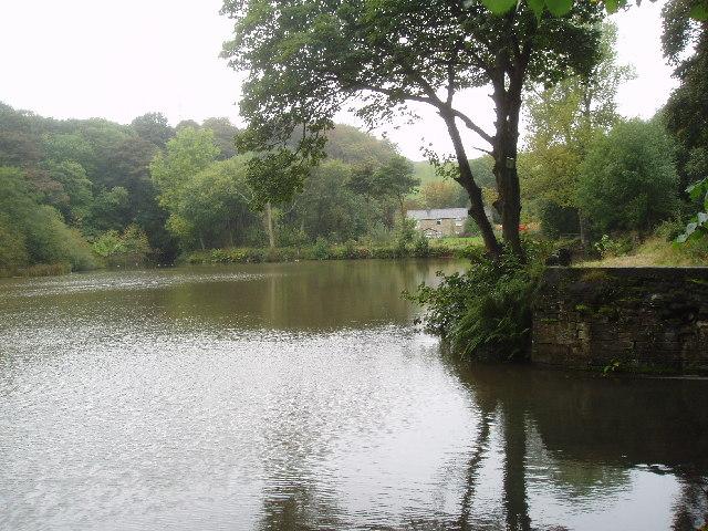 Doctor Dam, Norden near Rochdale, Lancashire - geograph.org.uk - 39565
