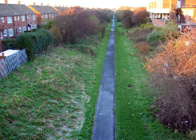 Footpath, Whiteleas - geograph.org.uk - 80723