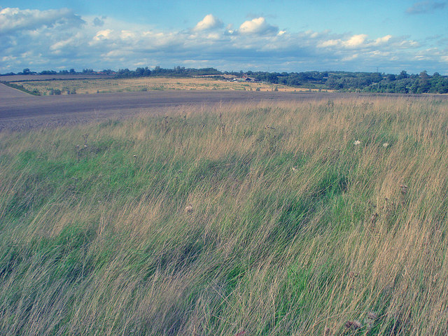 Grassland north of the Sence Valley Forest Park - geograph.org.uk - 1495145