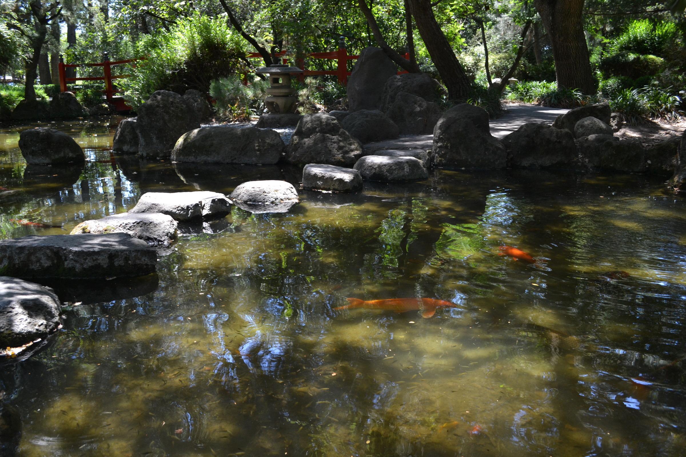 Anese Garden Micke Grove Garden Ftempo