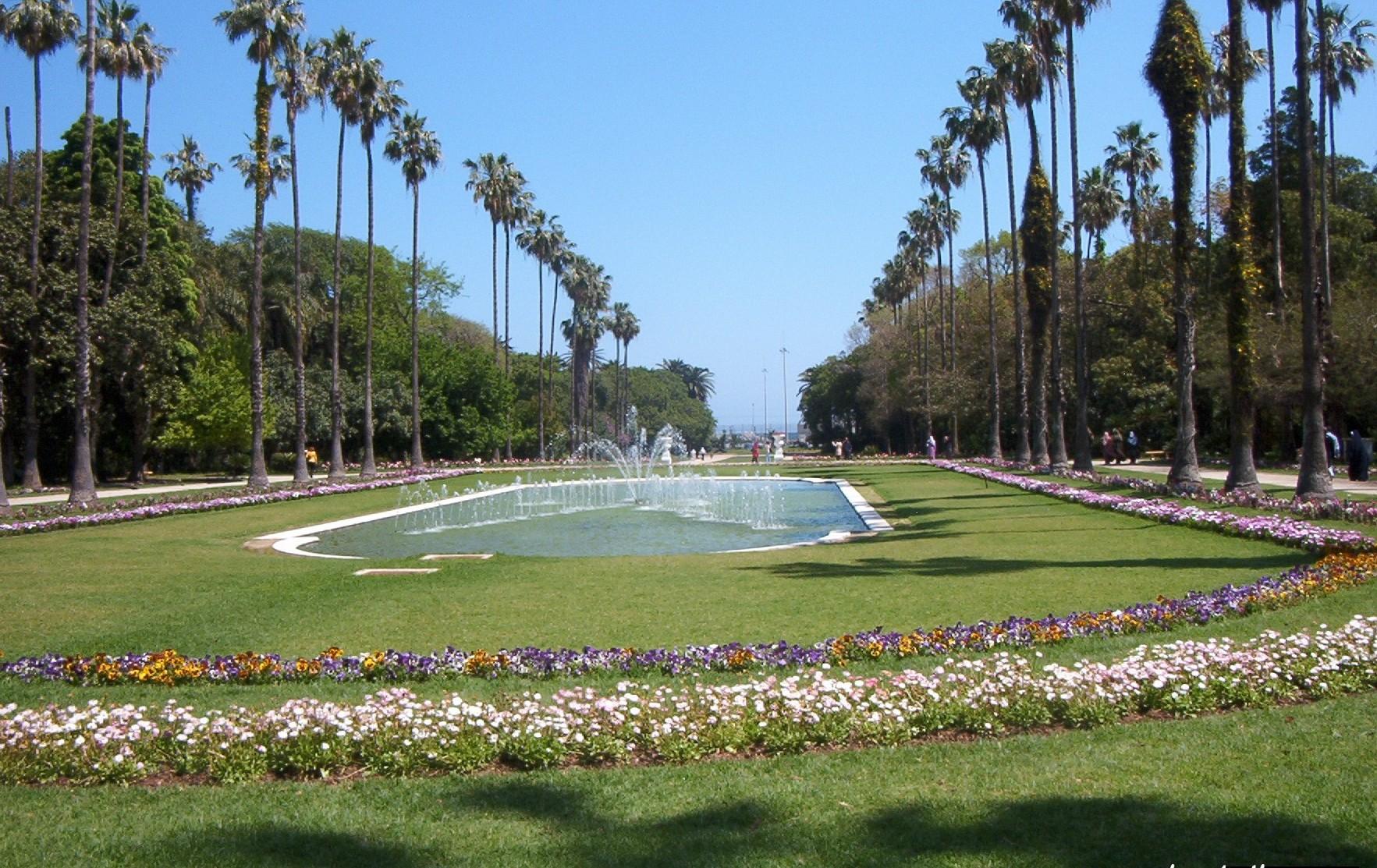 Blogues algerie le jardin du hamma ma plan te pps for Au jardin du gouverneur