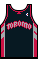 Kit body torontoraptors 08roadalt.png