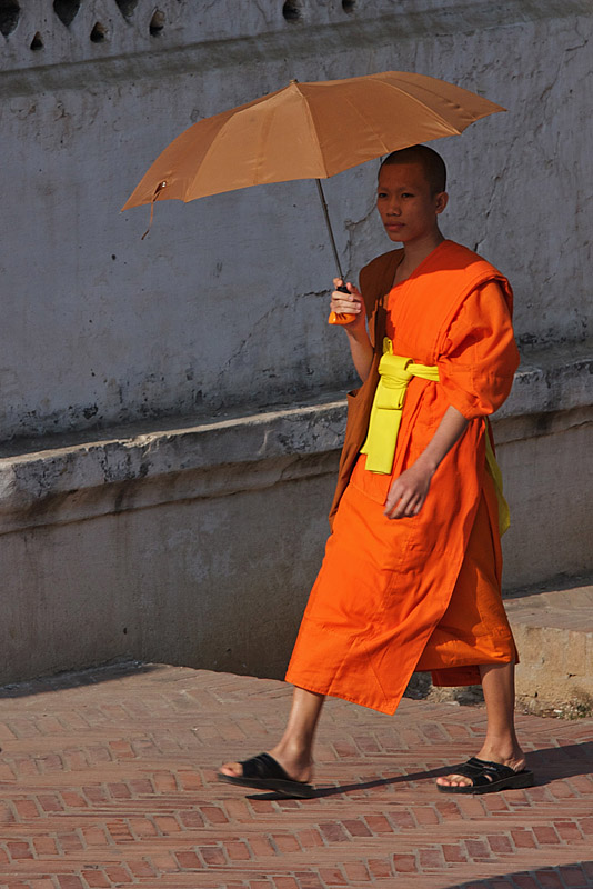 buddhist single men in orange county Men in orange robes claiming to be buddhist monks are approaching  on real housewives of orange county  is single and hopes to be 'her man.