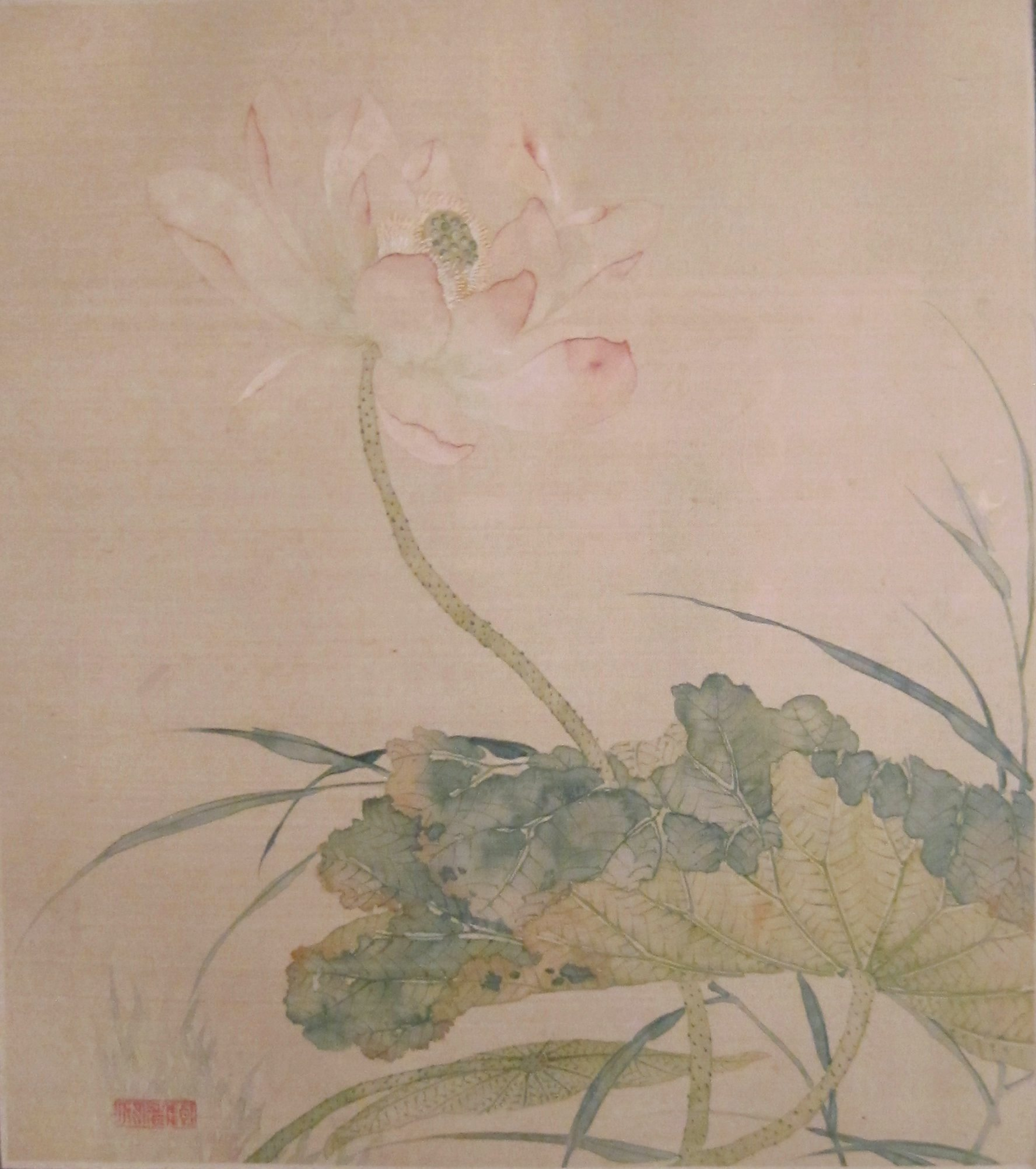 Filelotus From Album Of Flower Paintings By Tao Rong Honolulu
