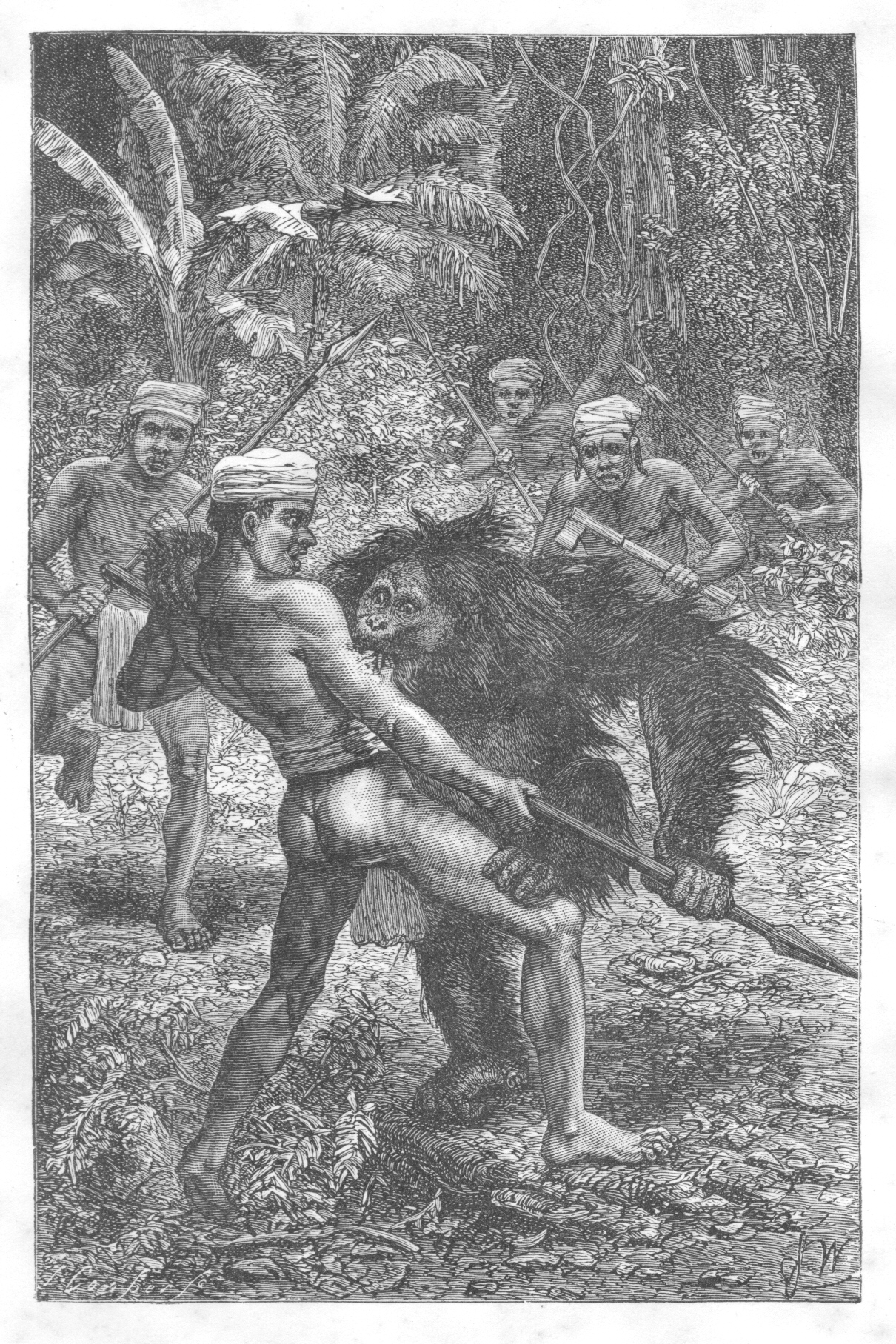 Orangutan-human hentai xxx pictures