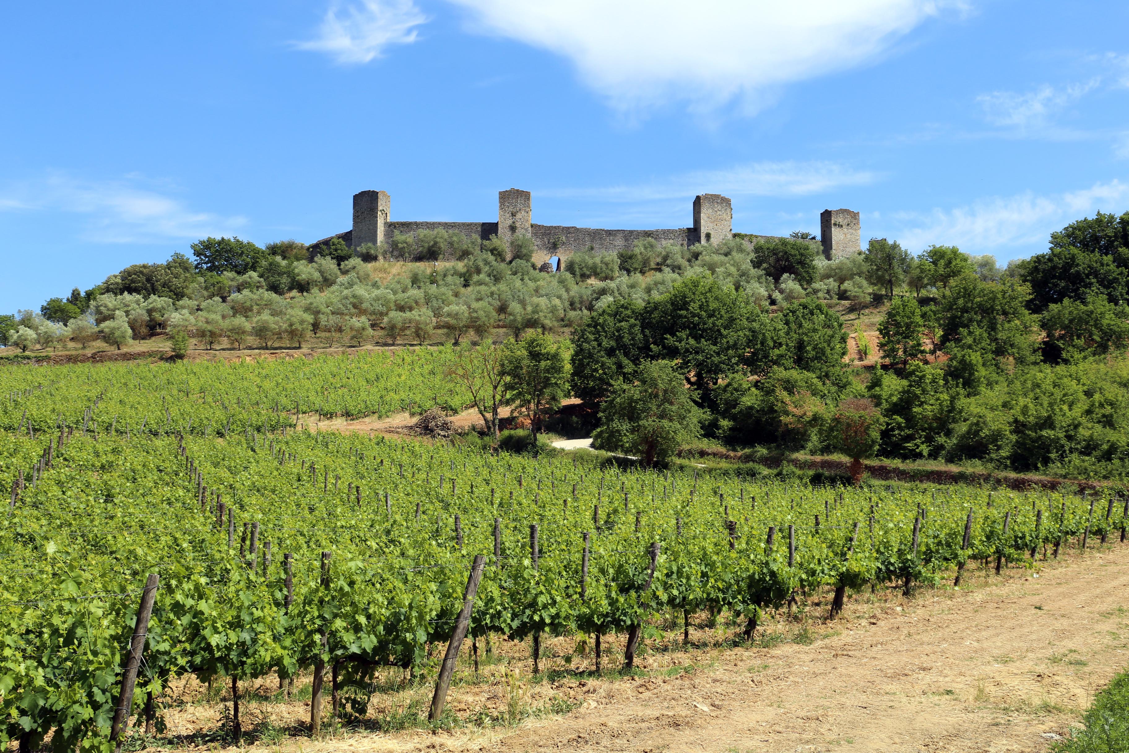 Monteriggioni, veduta delle mura 02.jpg