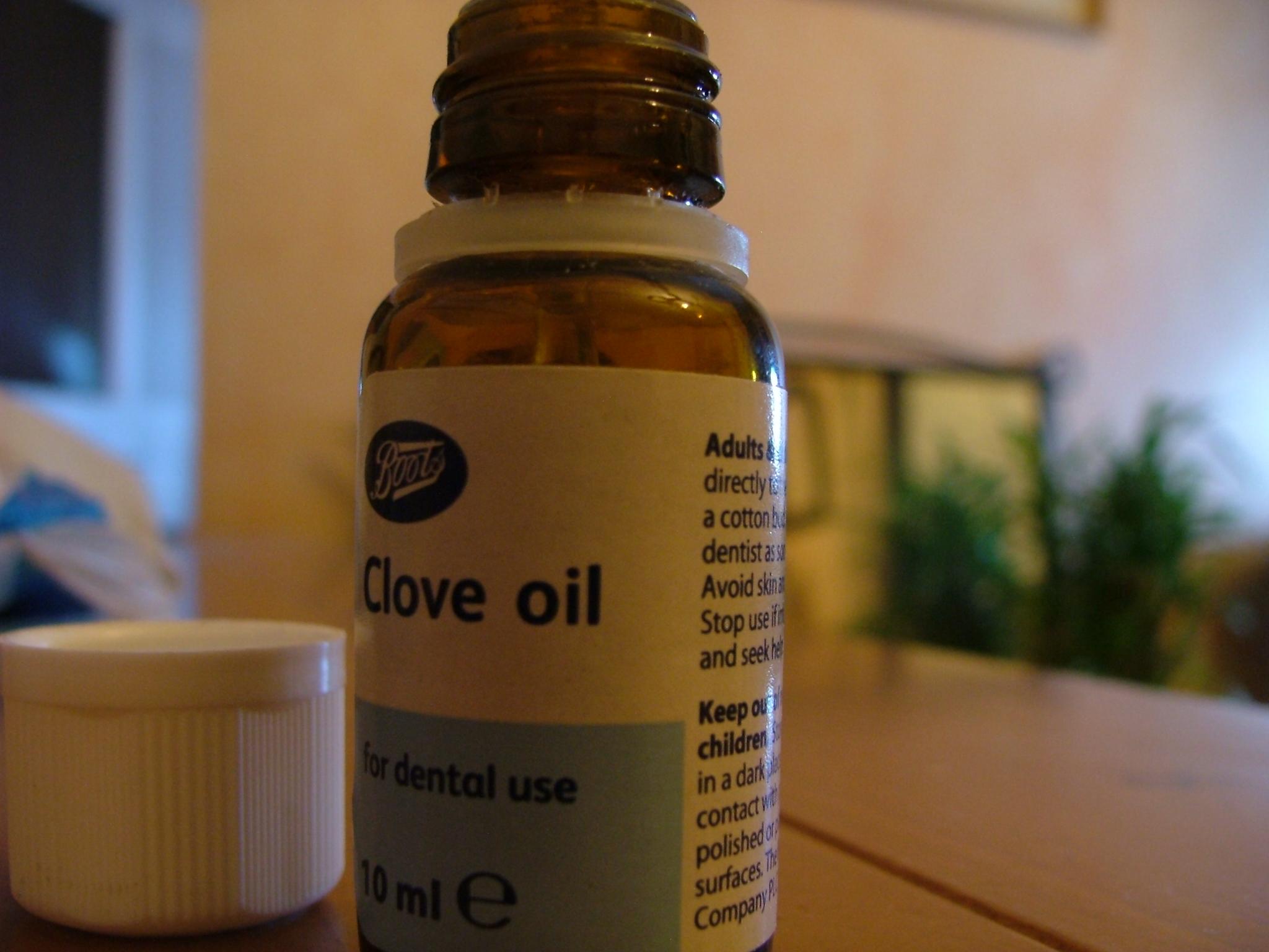 File:Oil of cloves.jpg - Wikimedia Commons
