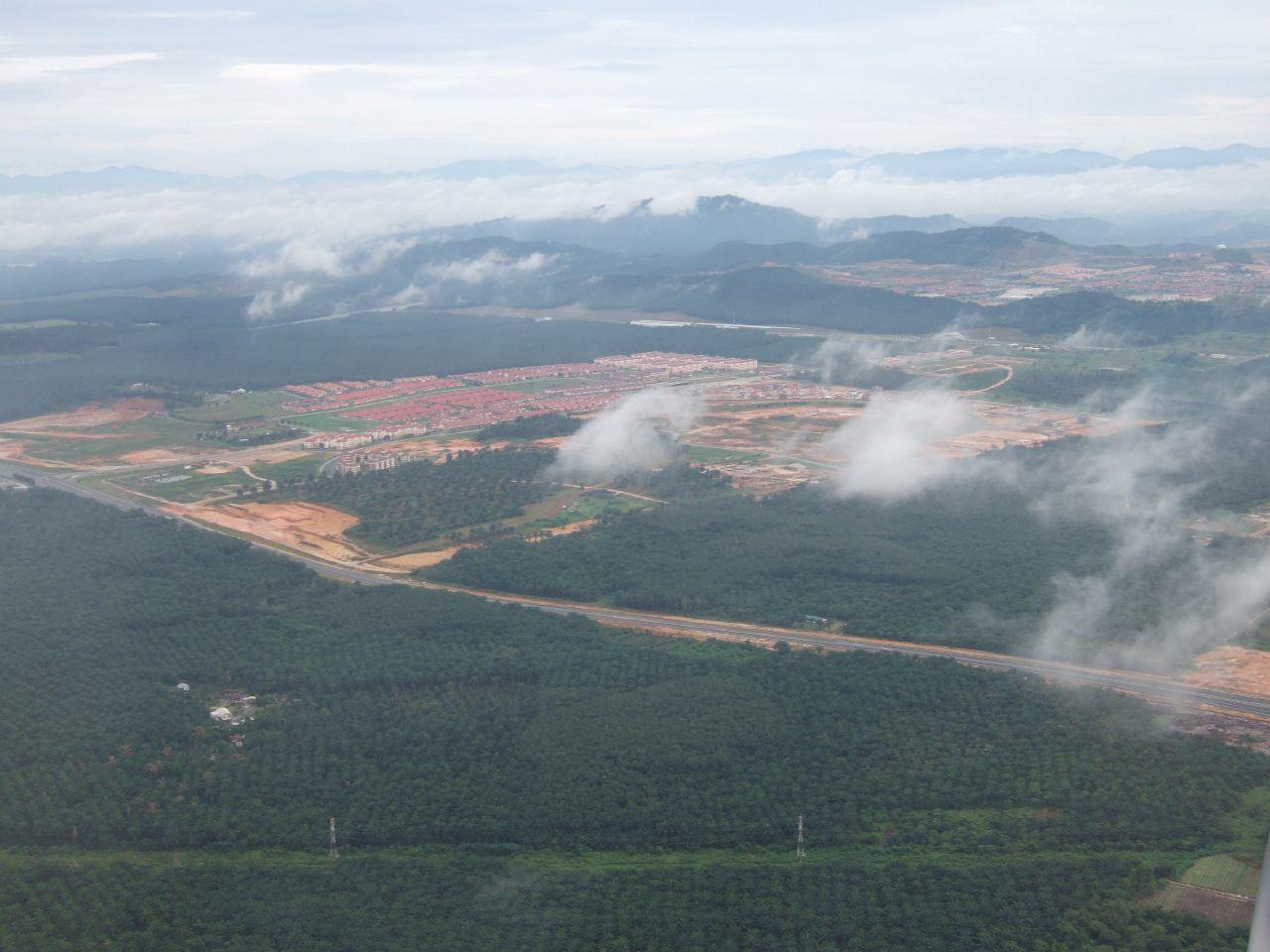 Oil palm plantations in Sarawak.jpg
