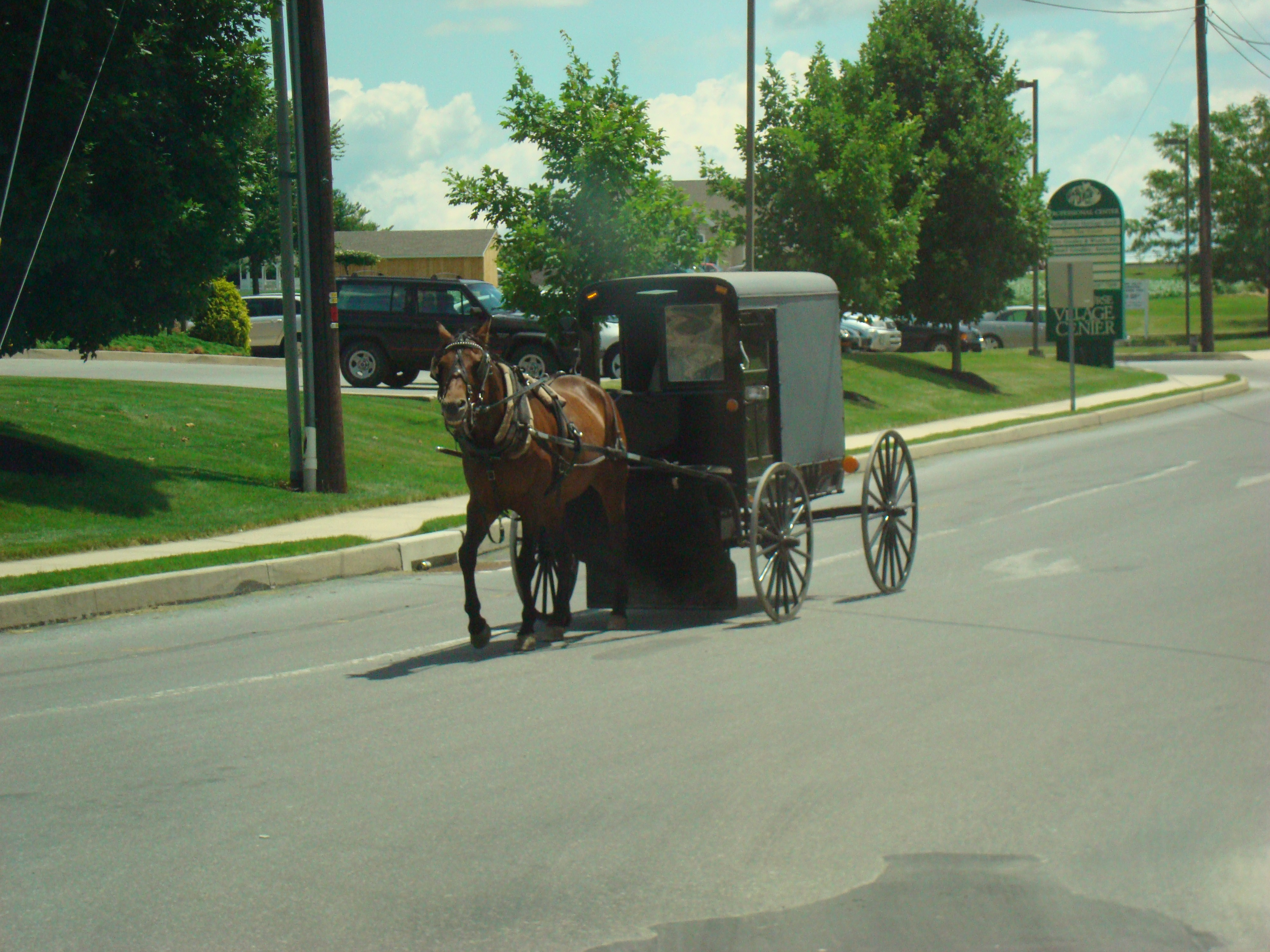 Old Order Amish