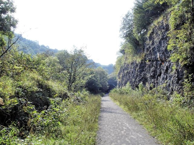 On the Monsal Trail in Chee Dale - geograph.org.uk - 1029925