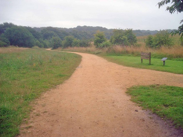 Path through Bestwood Country Park - geograph.org.uk - 1434892