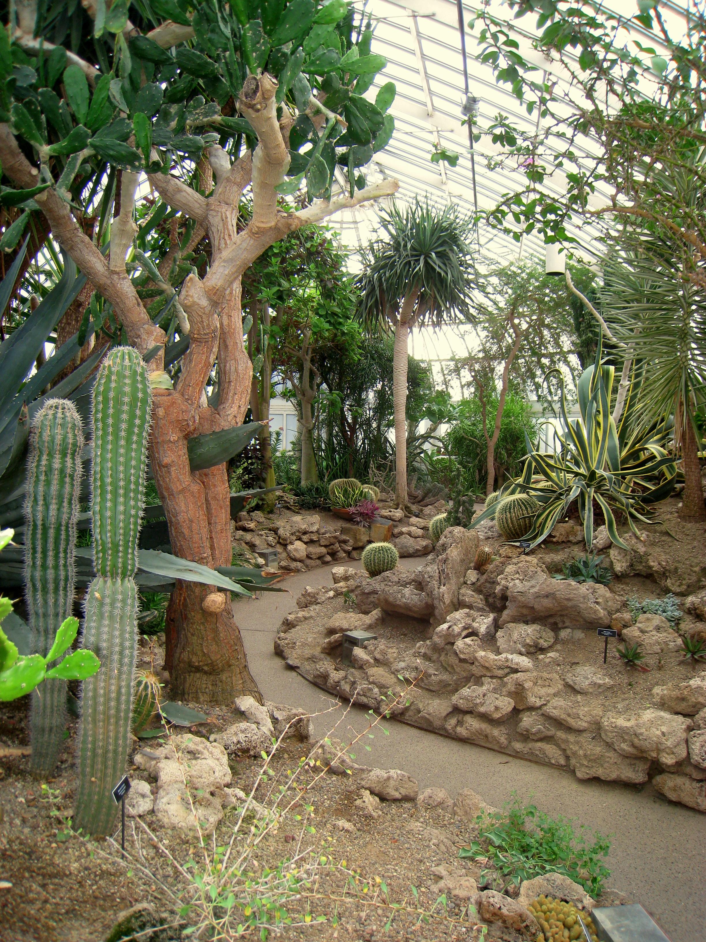 File:Phipps Conservatory & Botanical Gardens 208.jpg - Wikimedia Commons