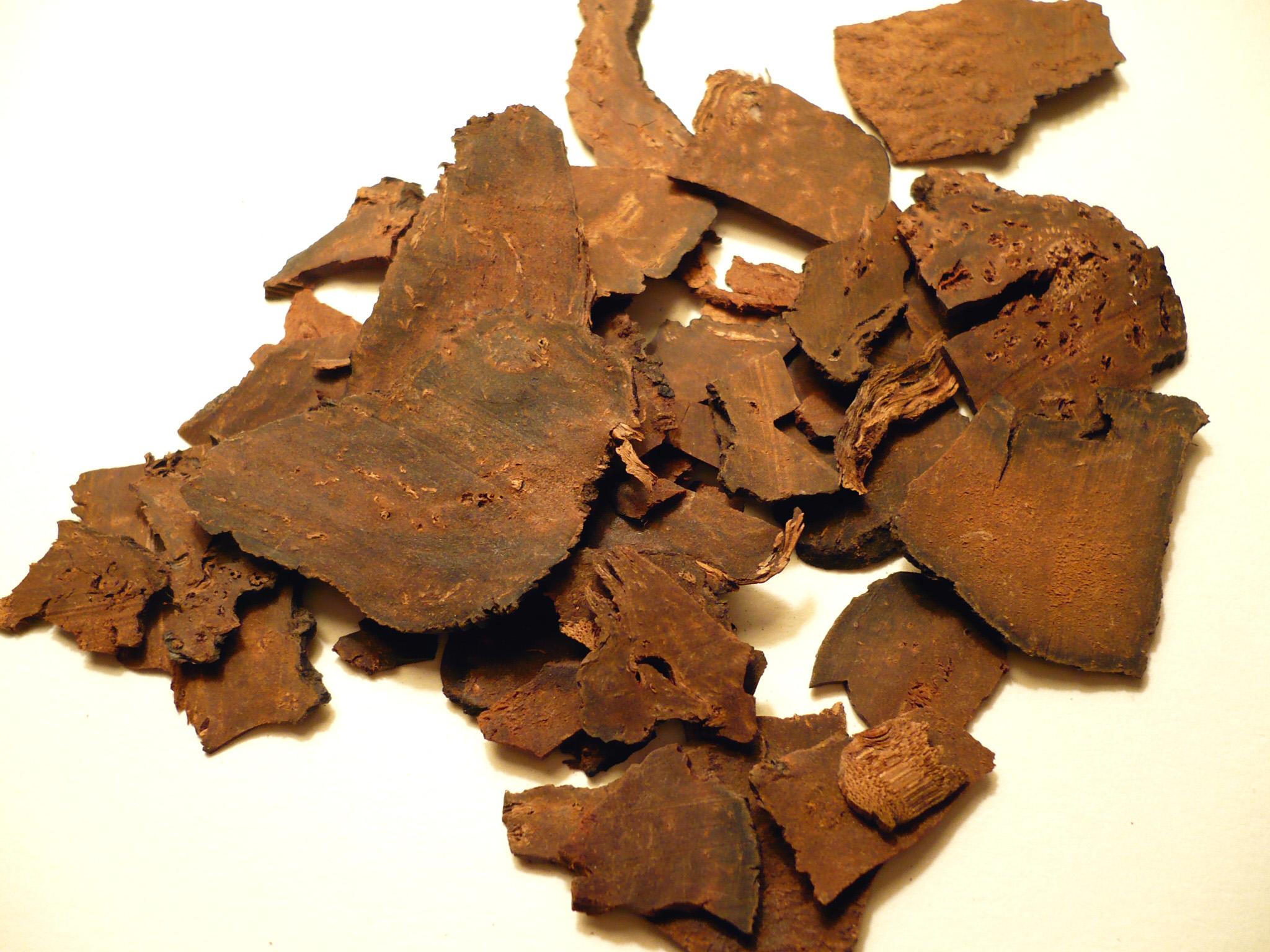 File:Polygonummultiflorumrootdried.jpg - Wikimedia Commons