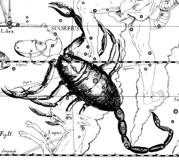 ESCORPION Scorpio_Hevelius