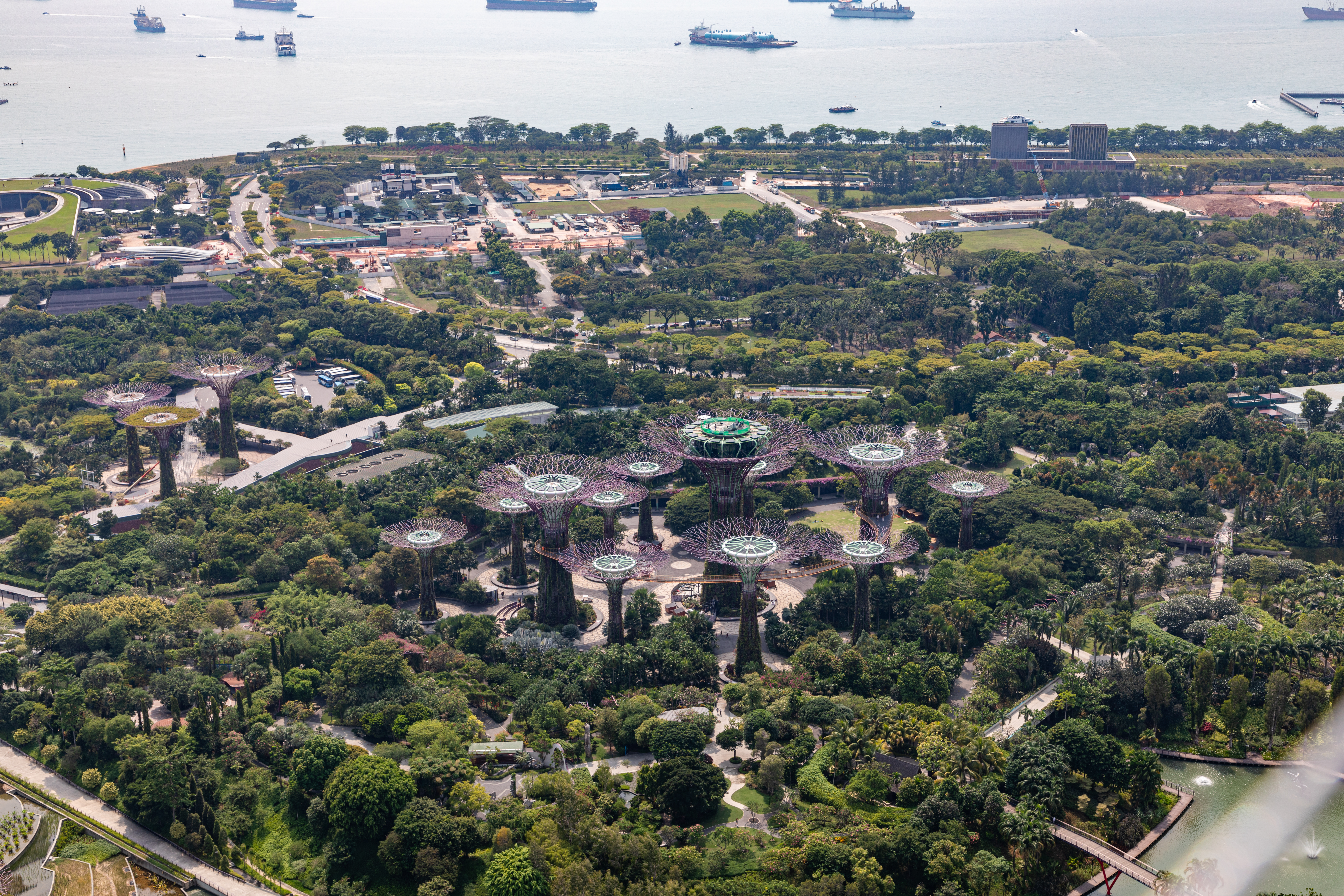 File Singapore Sg Gardens By The Bay 2019 4725 Jpg Wikimedia Commons