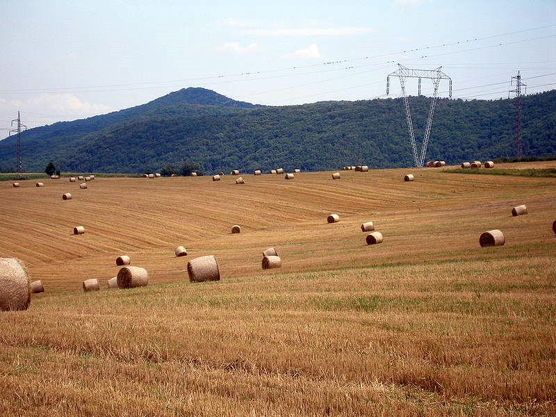 File:Slovakia Sedlice 54.jpg