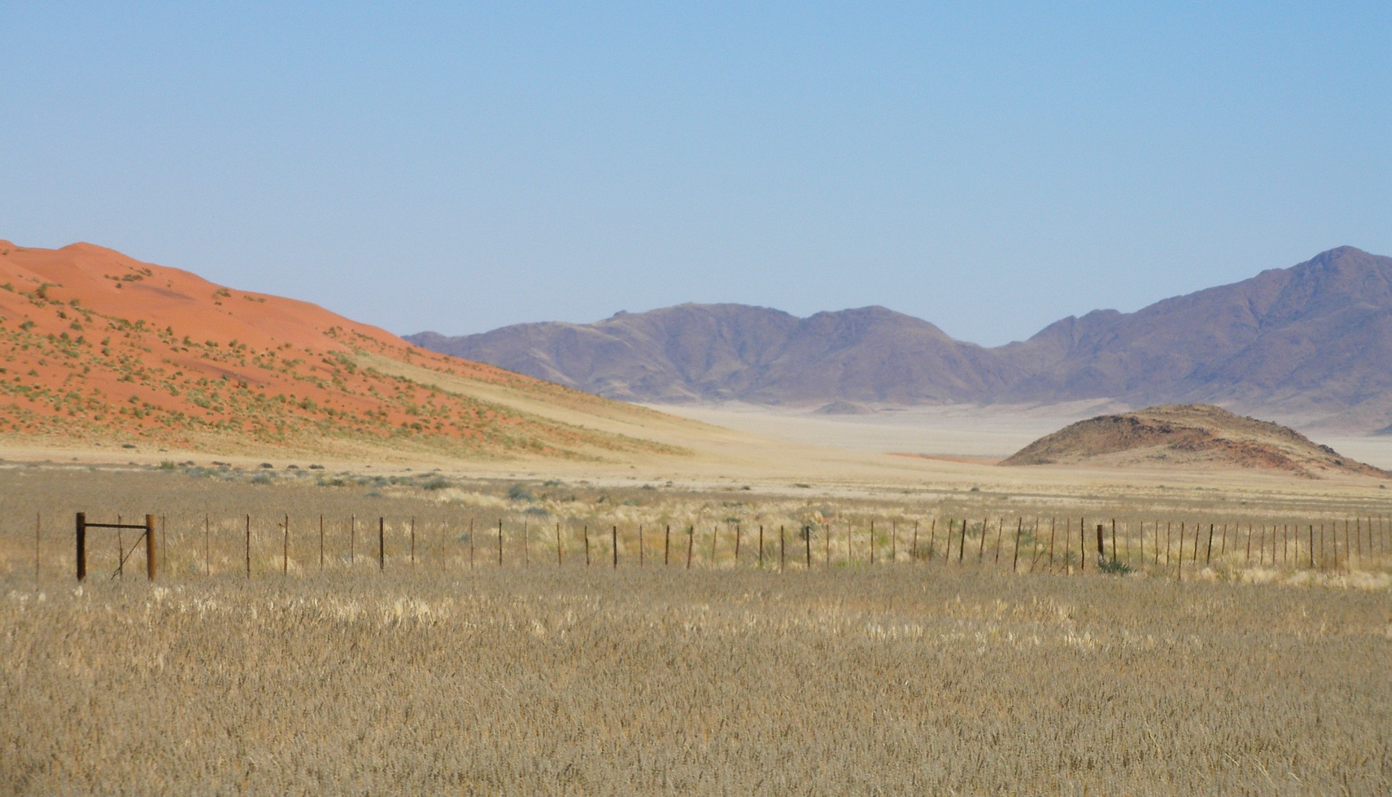 South Namibia.jpg