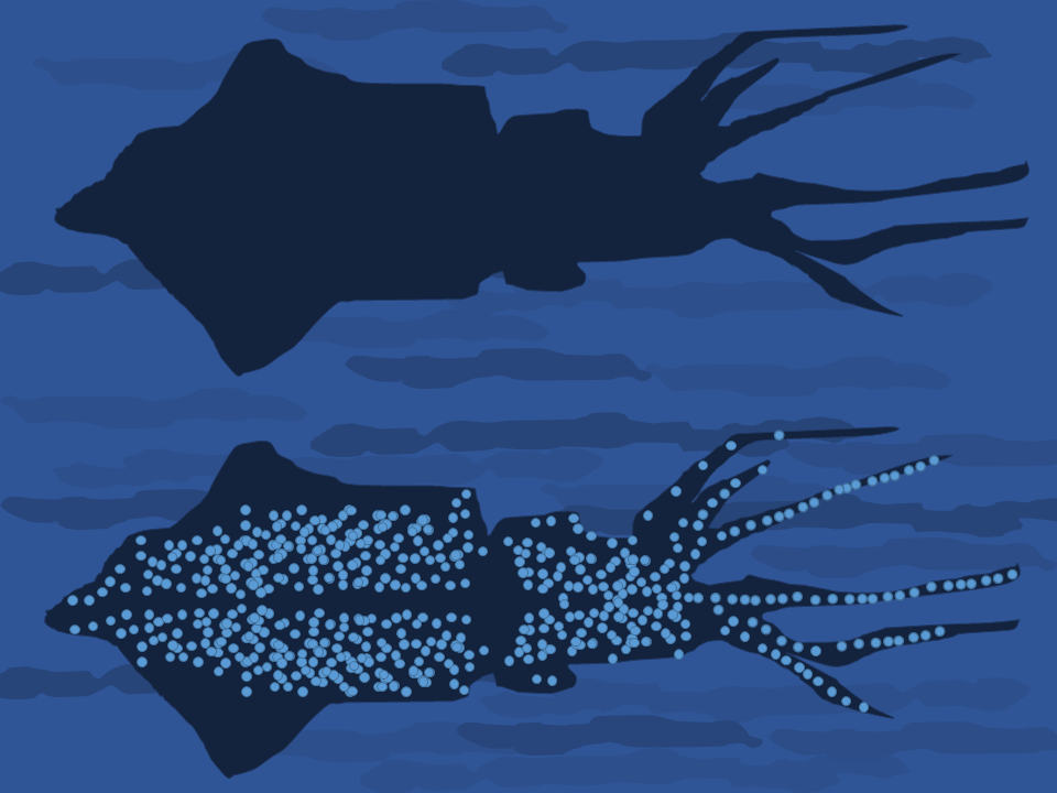 Bioluminescence: A Light In The Dark – Extreme Marine