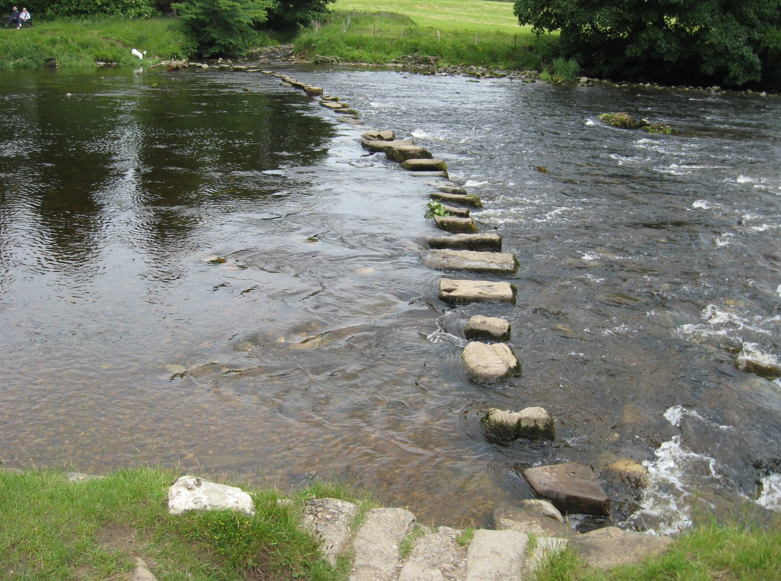 Image result for stepping stones on a river