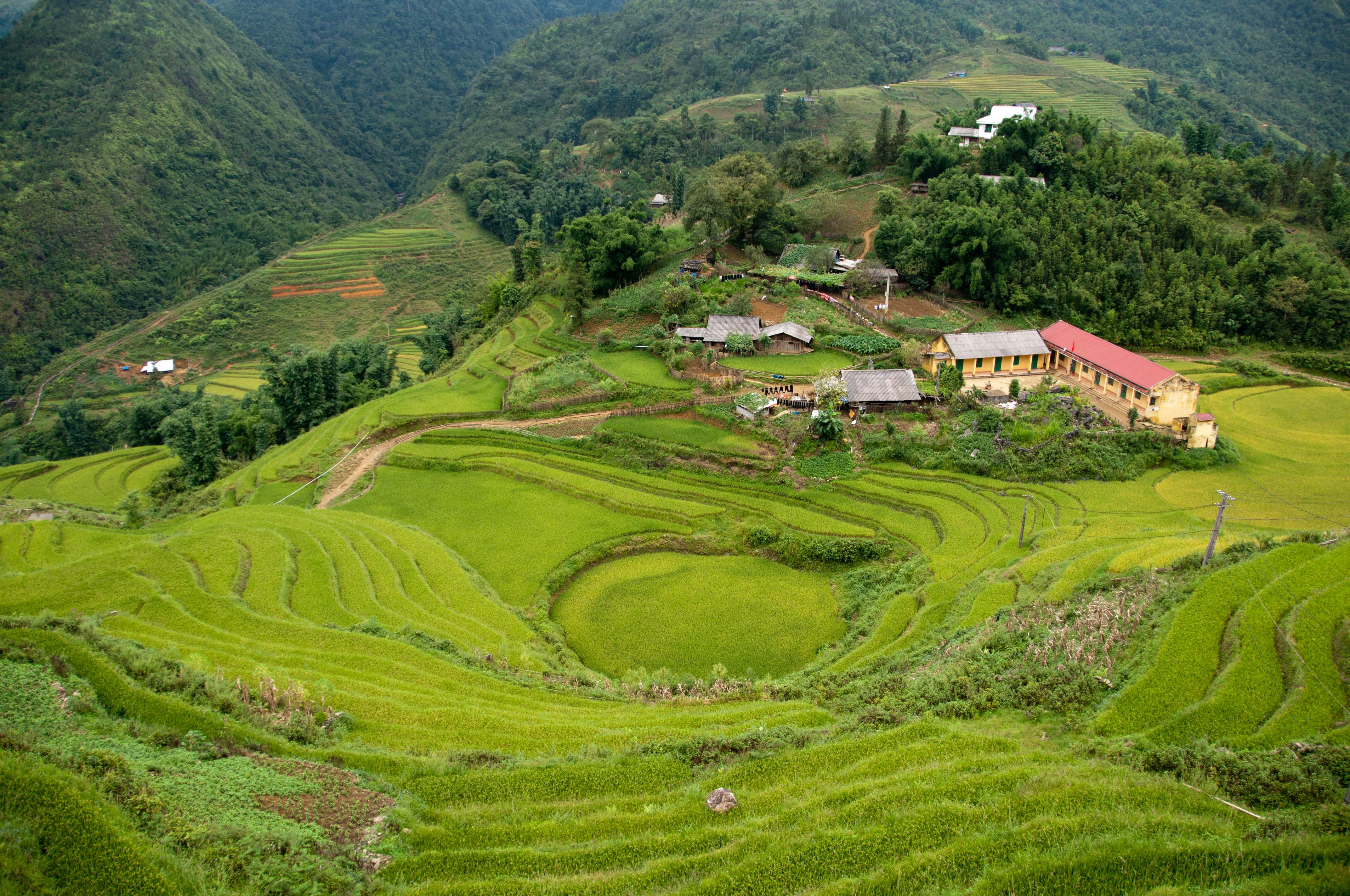 Sa Pa – Wikipedia tiếng Việt