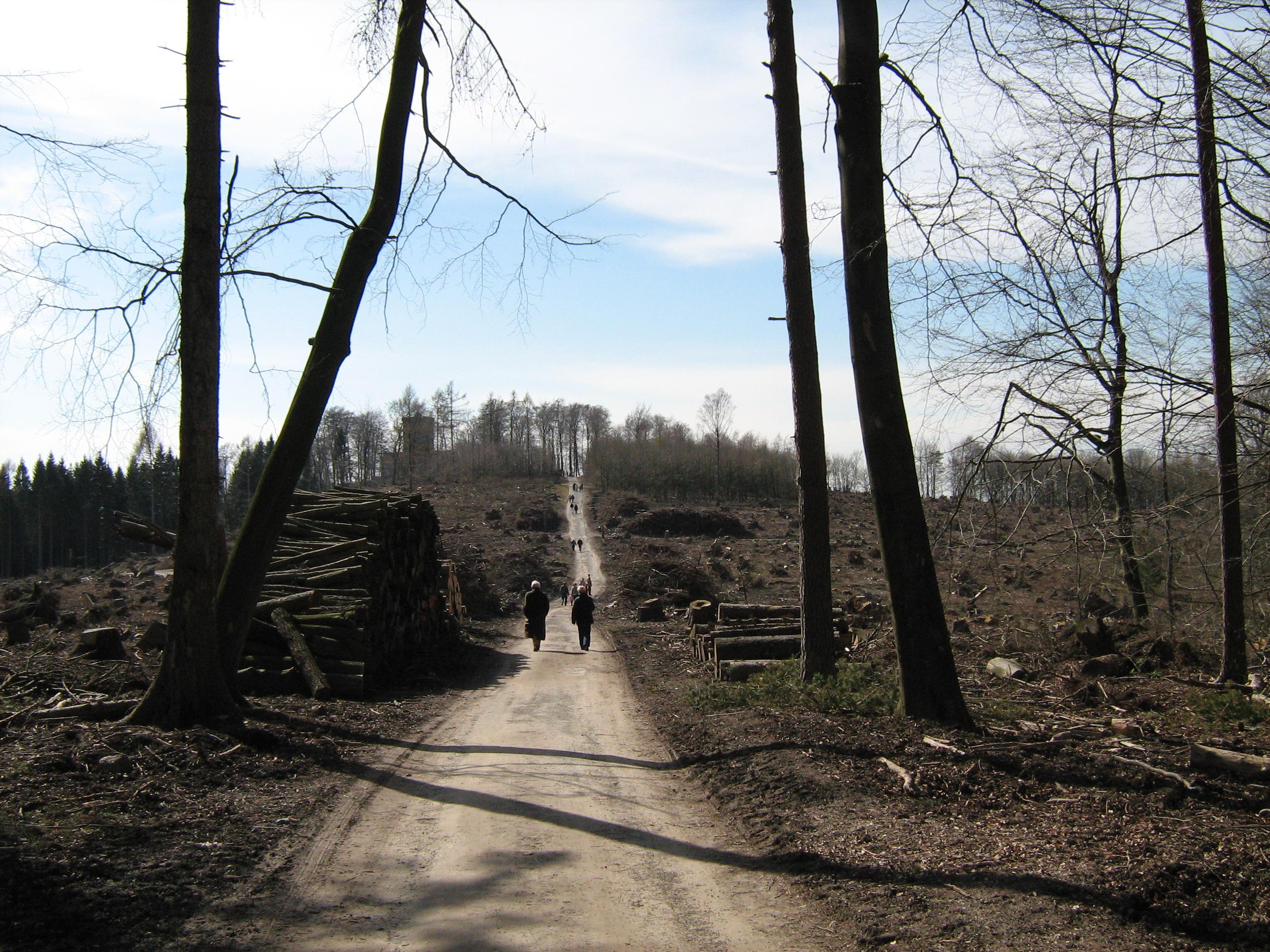 Im Hintergrund das Dorf