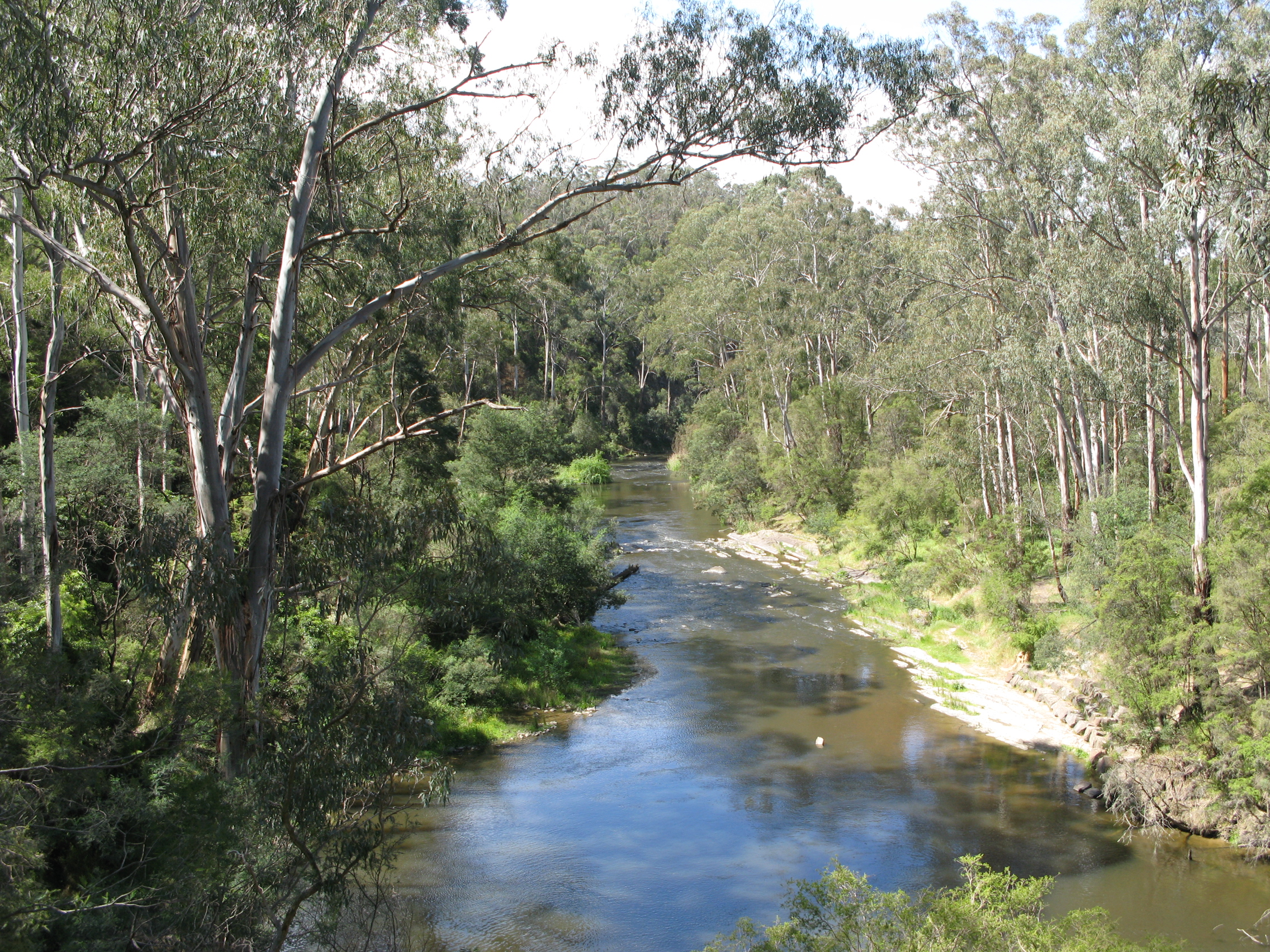 File yarra river pound bend jpg wikimedia commons for Landscaping rocks yarra valley