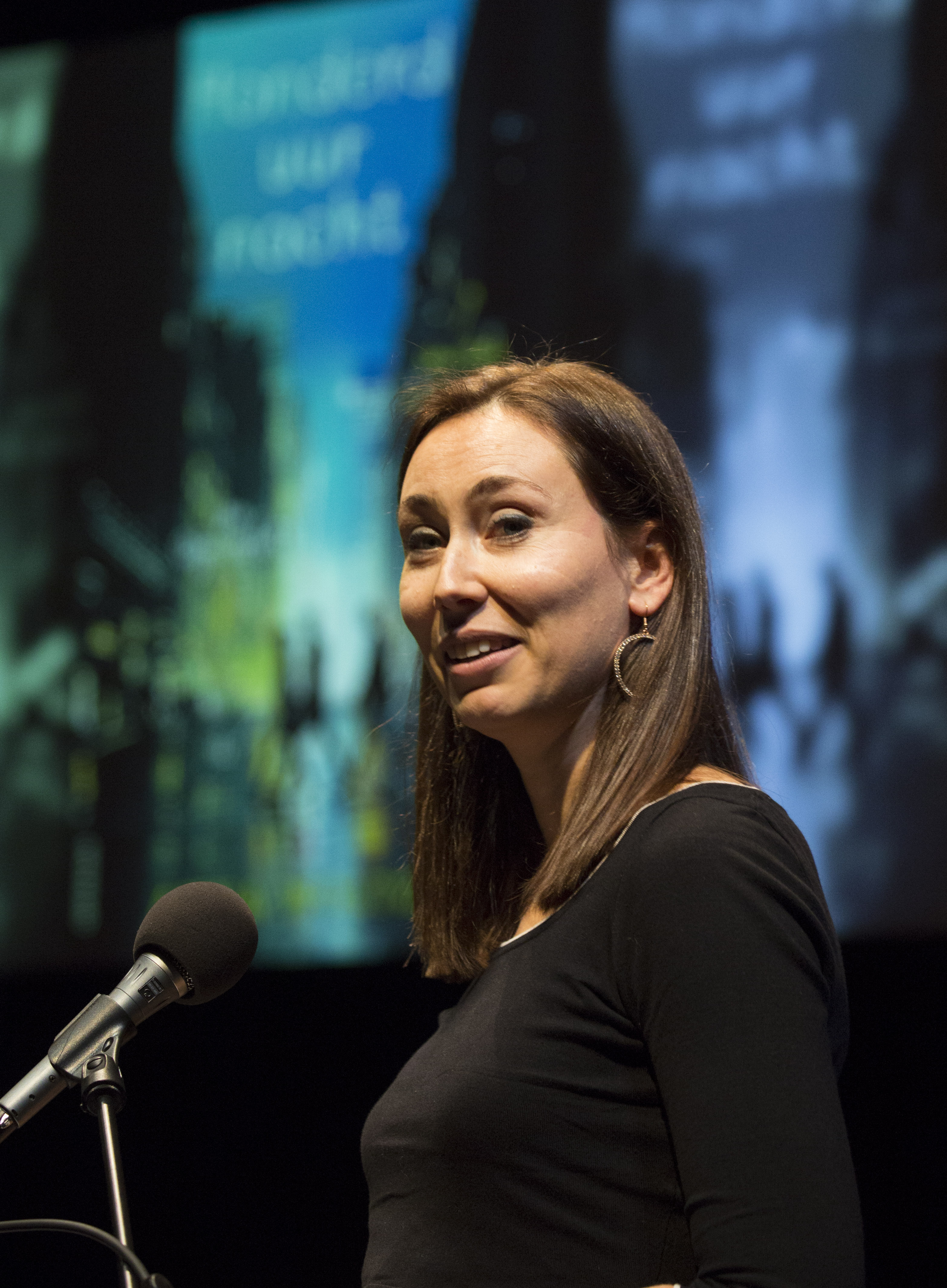 Anna Woltz (2016)