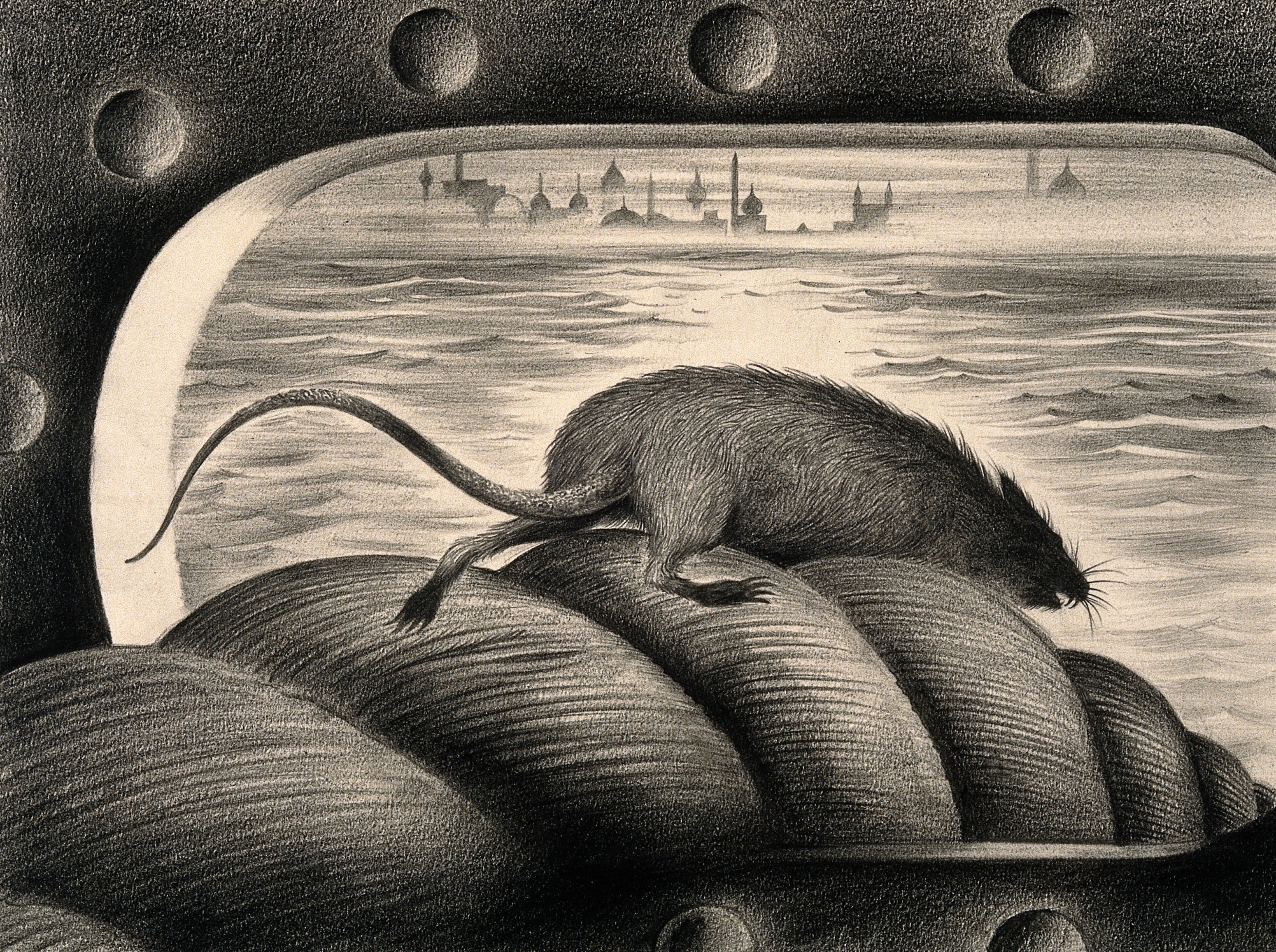 An image of a rat leaving a ship.