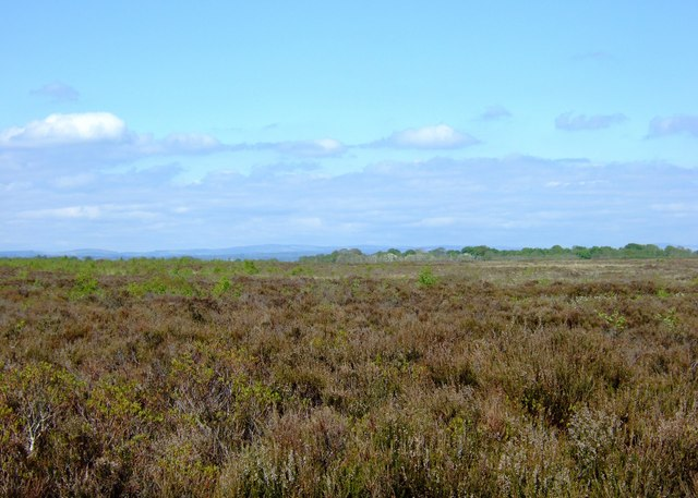 File:Across Glasson Moss - geograph.org.uk - 806789.jpg