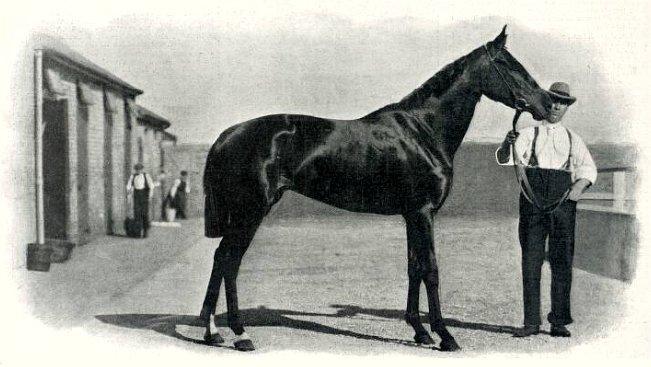 File:Aida (horse).jpg