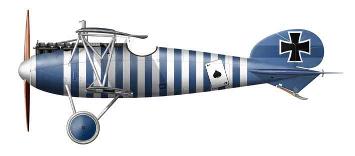 Albatros D.V Jasta 79b, Author Herbert Ringlstetter - www.aviaticus.com - wikipedia CC