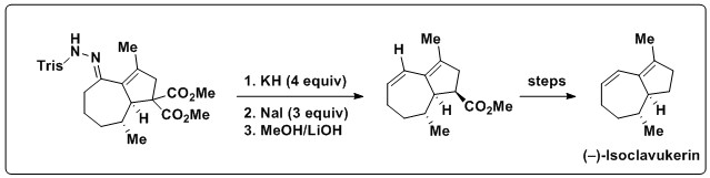 Application of the Bamford-Stevens reaction in natural product total synthesis
