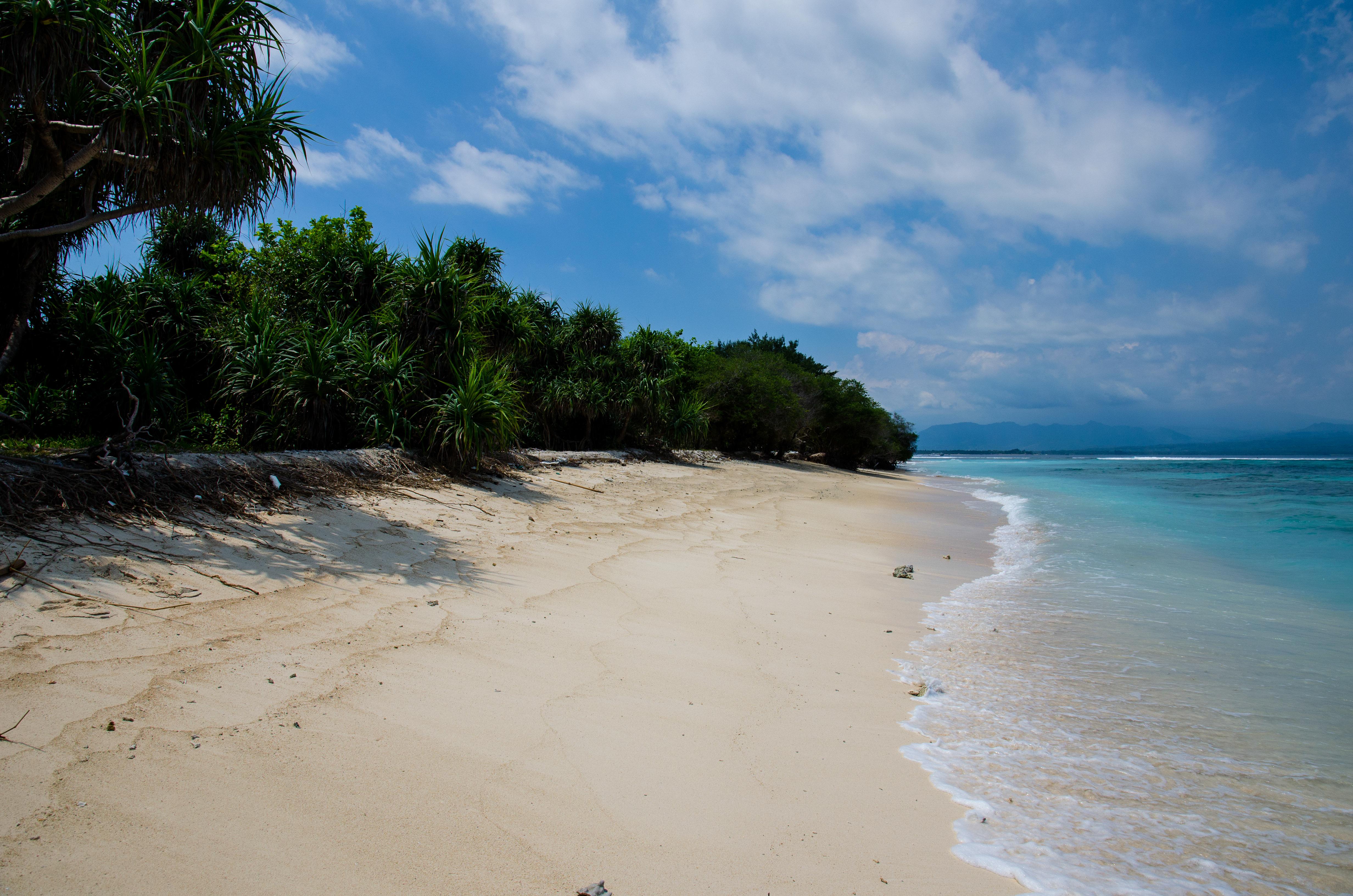 Coco Beach Island Resort Email Address