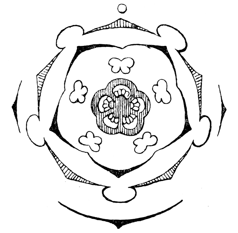 Glockenblumen  U2013 Wikipedia