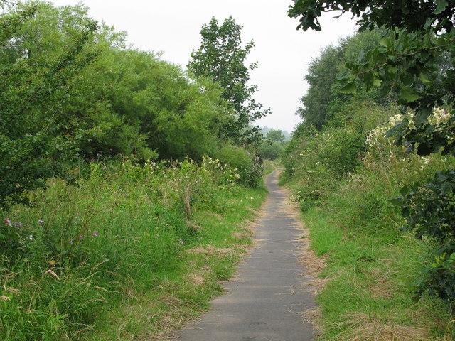 Clyde Walkway - geograph.org.uk - 903549