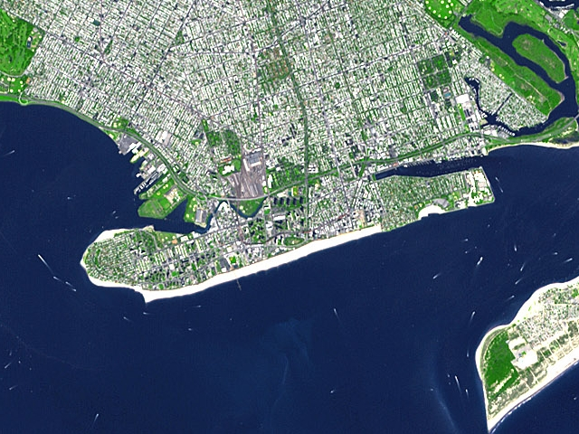 Coney Island Wikipedia Wolna Encyklopedia