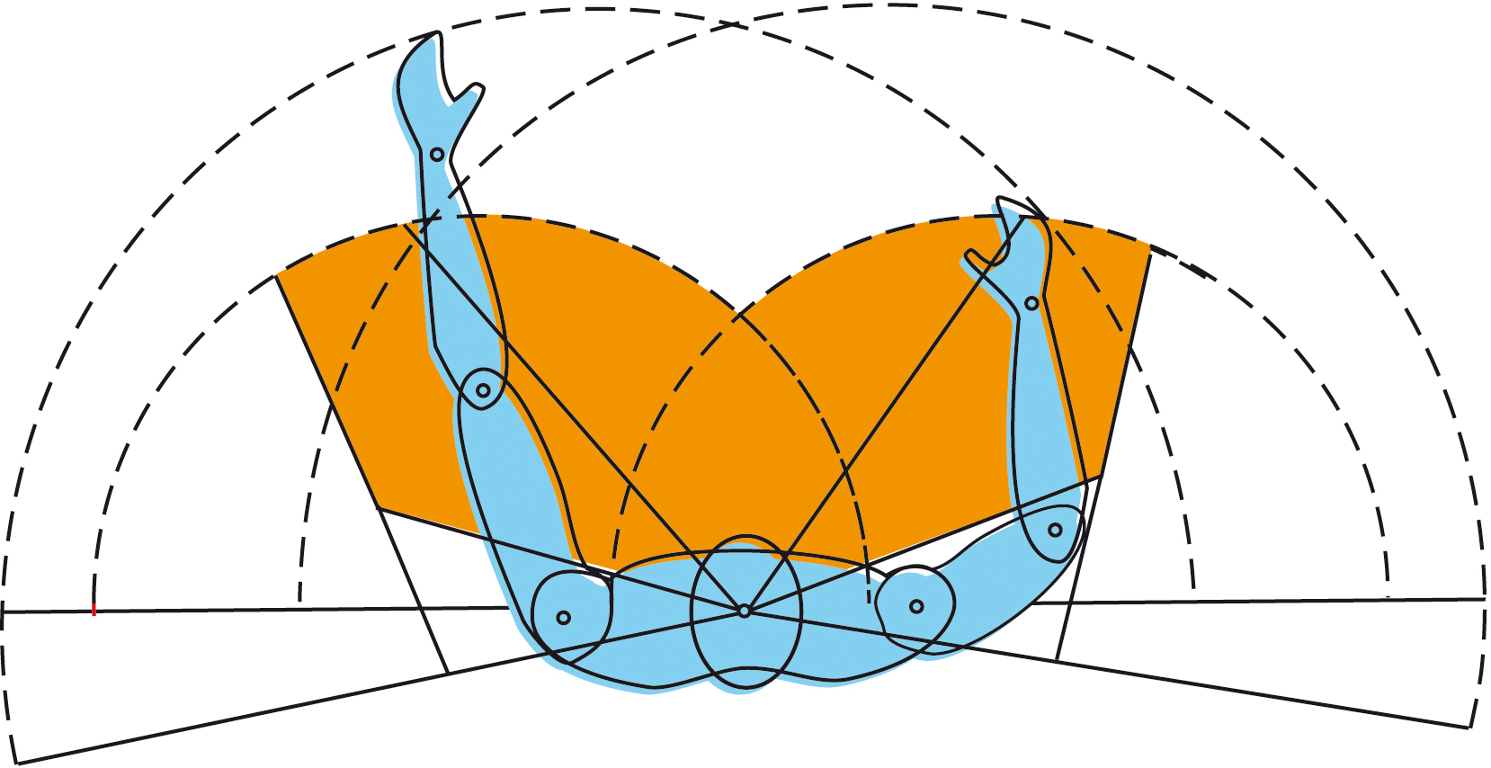 File ergonom a reas operativas de la simetr a bilateral for Espacio de trabajo ergonomia