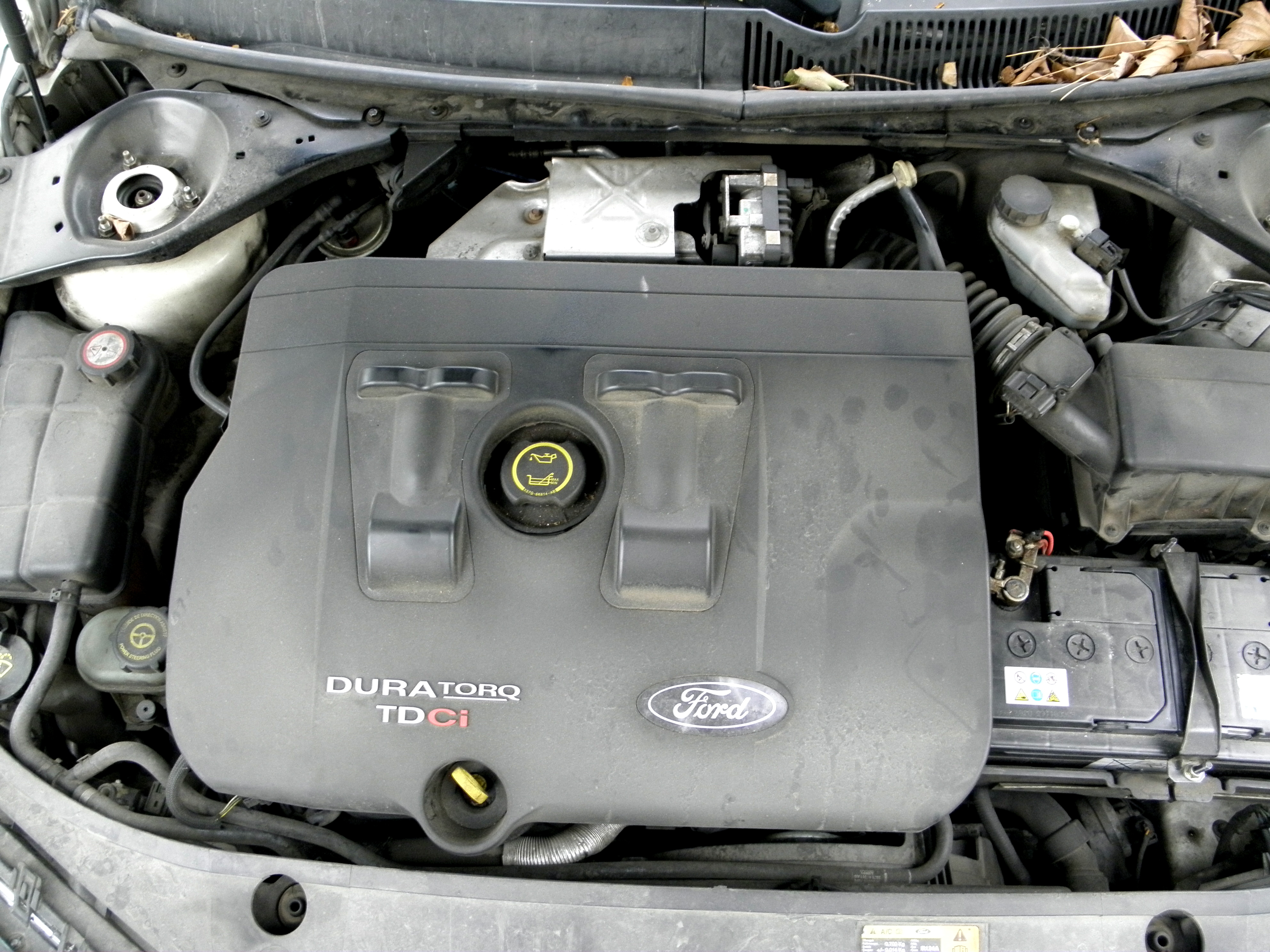 Ford Duratorq Engine