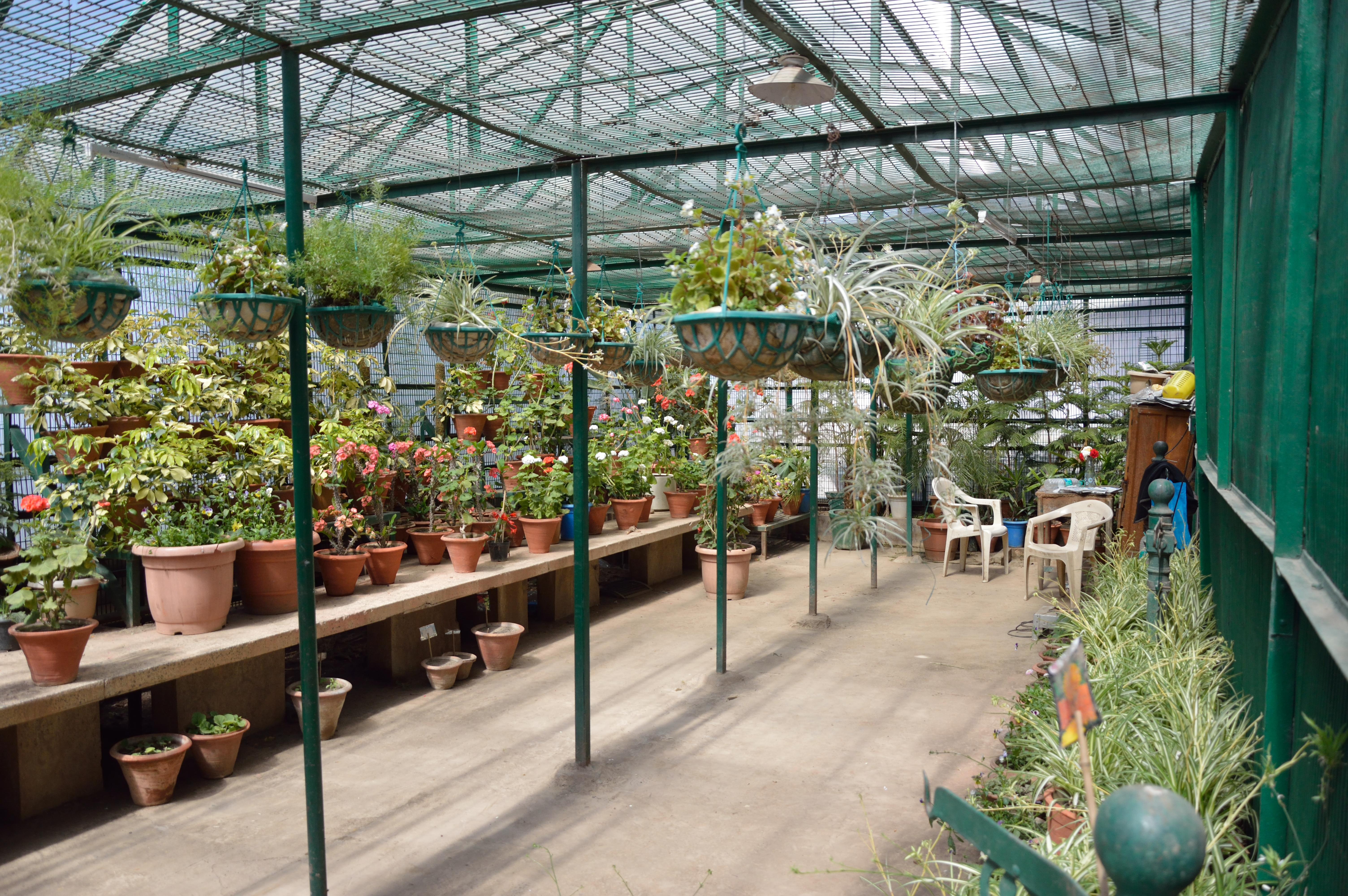 The green house hotel - File Greenhouse Grand Hotel Shimla 2014 05 08 1449 Jpg