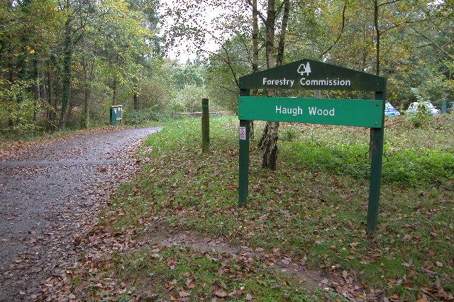 Haugh Wood - geograph.org.uk - 94554